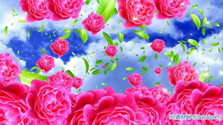 红玫瑰花瓣飘舞绿叶飞舞唯美高清舞台背景动态视频素材(有音乐)