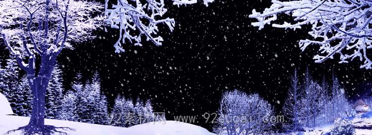 冰松-松树雪地松花雪花飘落全息投影 动态视频素材