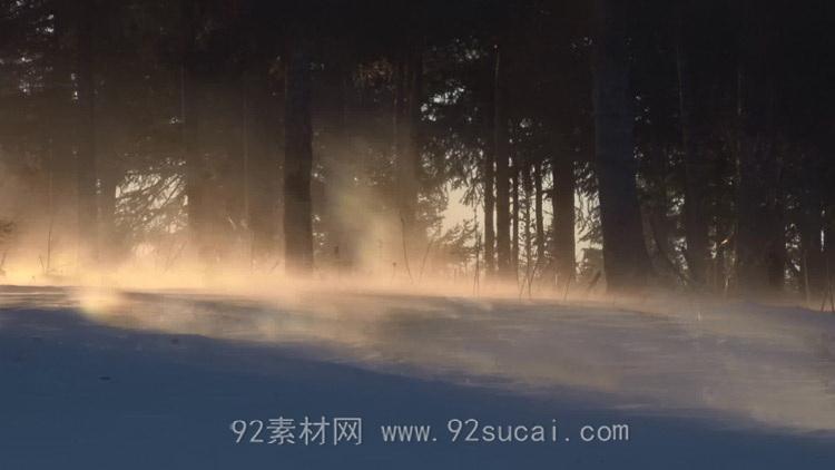 树林中的风雪吹起满地尘烟 高清实拍动态视频素材