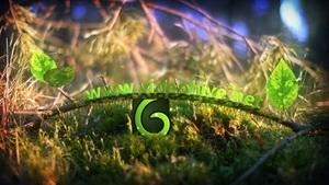 春天树叶树根发芽展示标志AE视频模板 Spring Leaves Logo