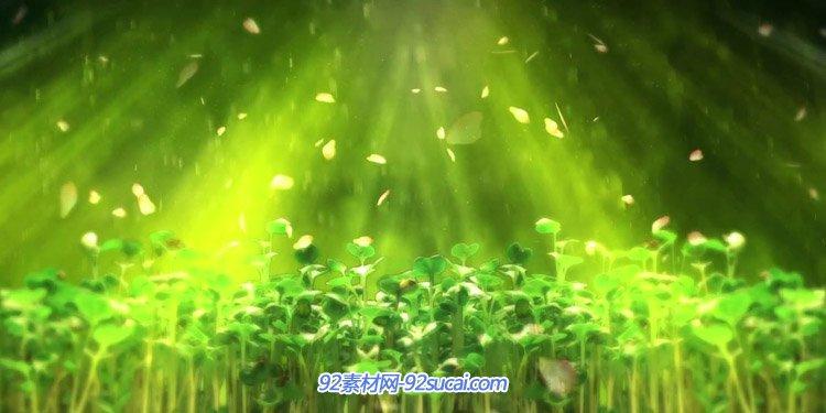 春天雷雨季節 滋潤大地植物發芽生長意境LED舞臺背景動態視頻素材
