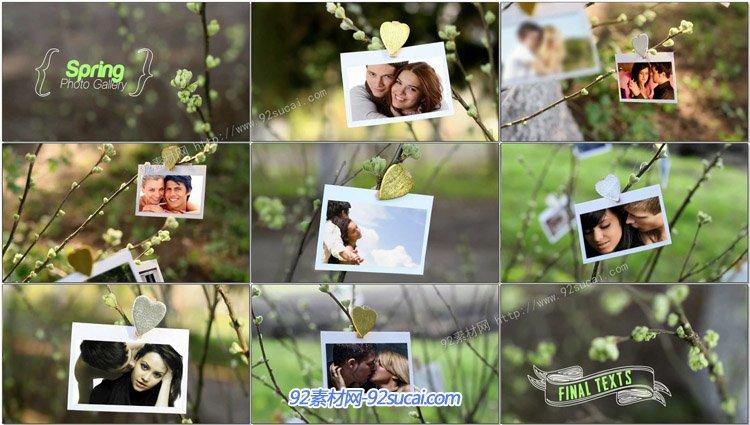春色满园树枝悬挂照片电子相册展示AE模板 Spring Photo Gallery