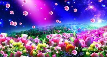 極品唯美夢幻意境絢麗花海星空花朵高端婚禮舞臺背景動態視頻素材