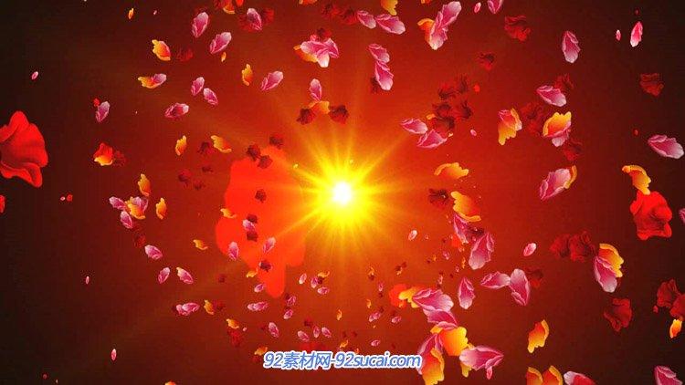 唯美浪漫红色残暴的花瓣漫天飞舞 婚礼庆典爱情舞台背景动态视频