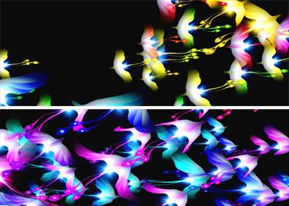 唯美絢麗的七彩鳳凰飛舞 裸眼3D全息視頻素材 動態背景視頻素材