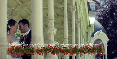 AE模板 婚庆电子相册介绍信息字幕标题鲜花包装展示 AE素材