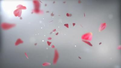 会声会影X6电子相册模板 浪漫宝宝写真