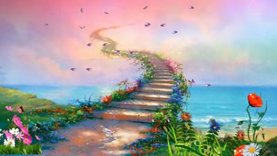 视频素材 彩虹天路背景鲜花飘落日落黄昏