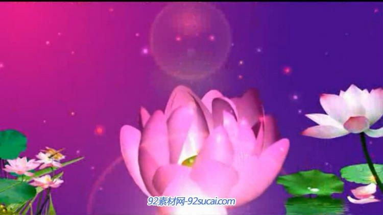 视频素材 戴德教员视频辛劳园丁春蚕烛炬肉体无私贡献高清LED