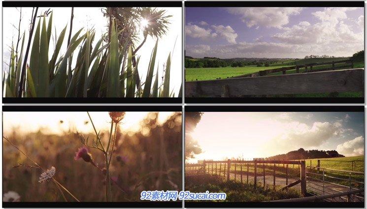 [J&K-4K演示片]唯美郊野大天然风景片 新西兰4K超高清实拍视频