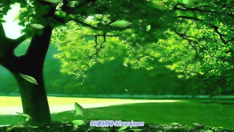 唯美清新绿色环保背景 美丽湖边茂盛的大树绿叶纷飞动态视频素材