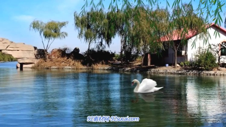 梦里水乡唯美湖水岸边柳树拱桥凉亭唯美风景动态背景视频-有音乐