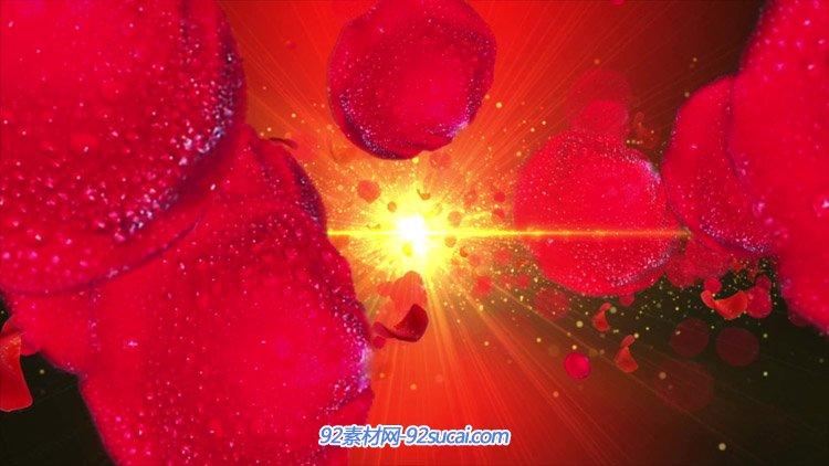 大红色喜庆大气玫花瓣飘落 唯美浪漫的婚礼庆典婚庆视频(有音乐)