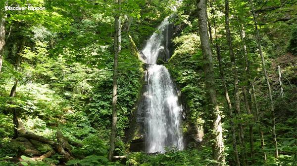 日本清新秀丽大山森林 绿树苔藓瀑布小溪超清实拍