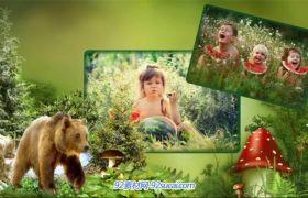 ProShow模板 野外自然森林野生动物相册展示模板