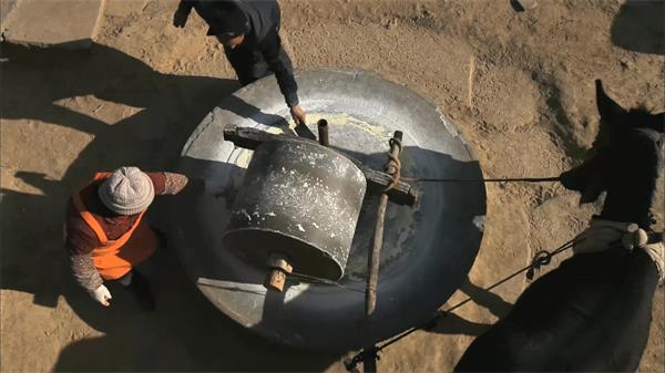 农村磨坊毛驴拉磨农民制作玉米糁高清实拍