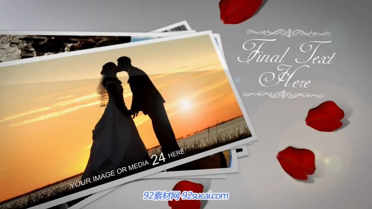 AE模板 浪漫温馨花瓣转场婚礼情人节主题相册模板 AE素材