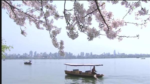 清新视觉杭州西湖青山绿水风景 西湖旅游风景实拍