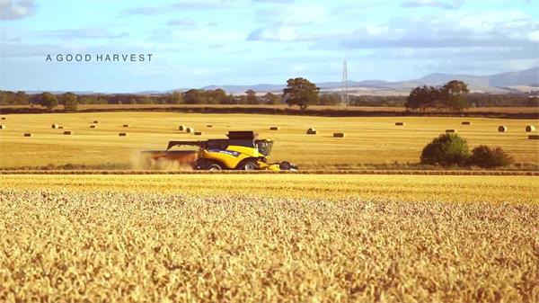 金黄小麦农田机械化农业收获风景 农业机械化收割高清航拍
