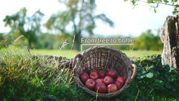 饱满苹果采摘制作生产苹果汁工厂宣传片 种植制作高清实拍