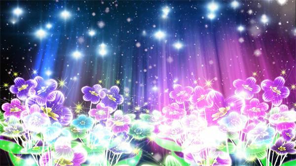 壮丽多彩荧光花星光粒半夜空闪耀遨游大屏幕LED配景视频素材