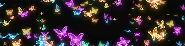颜色美丽蝴蝶群冉冉向天涌动高清视频素材