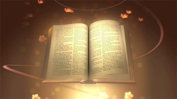 古典圣经散发迷人光芒翻页光斑闪闪花朵飘舞视频素材