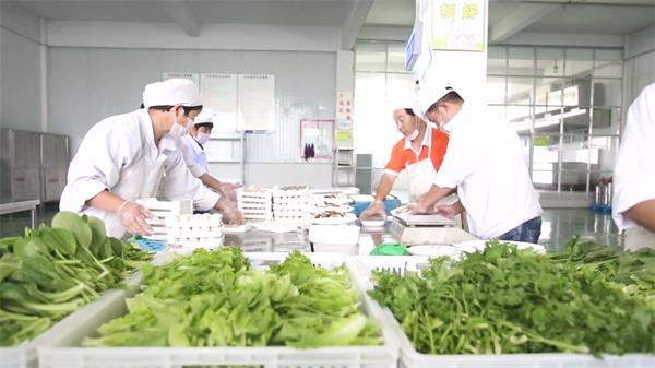 包装整理蔬菜辣椒洗濯处置运输 农产物包装高清实拍