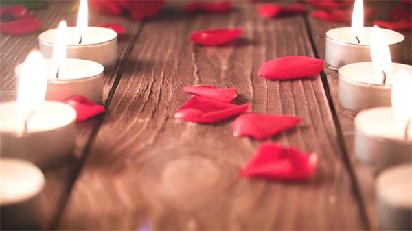 AE模板 优雅浪漫玫瑰花瓣婚礼场景电子相册模版 AE素材
