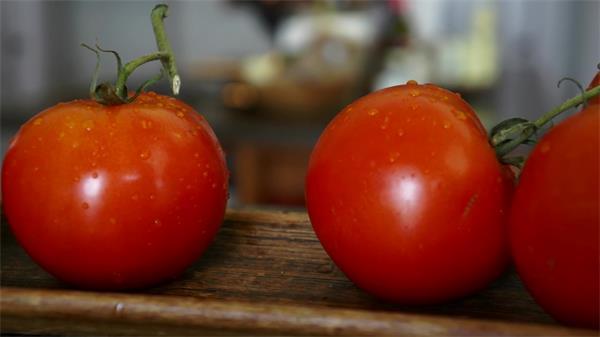 新鲜采摘营养丰富西红柿高清实拍宣传片