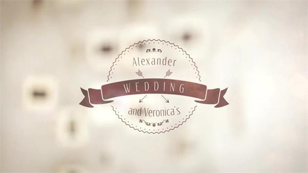 AE模板 怀旧人像工艺磨砂模糊婚礼相册幻灯片模版 AE素材