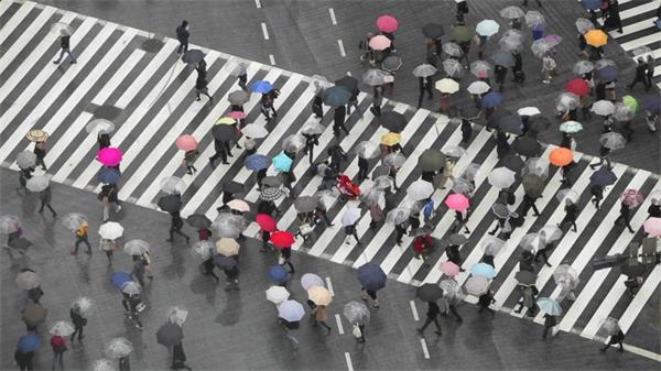雨天斑马线人行道人流交错延时实拍高清视频素材