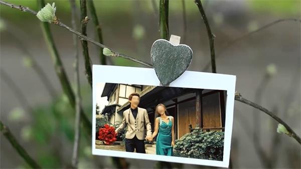 会声会影X6模板 唯美跟踪树枝晃动浪漫婚礼小清新电子相册