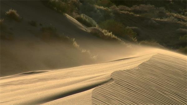 荒野沙漠大风吹起沙粒涟漪拍高清视频素材