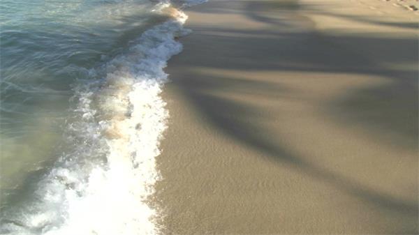 阳光沙滩小浪潮树影实拍高清视频素材