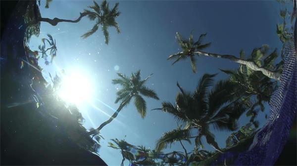 水底拍摄波浪纹陆地棕榈树实拍高清视频素材