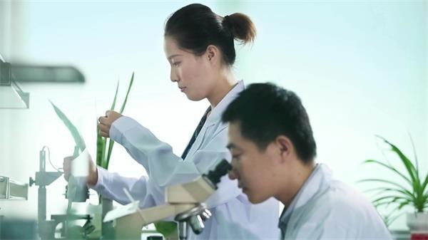 科学家药物科研测试分析实拍高清视频素材