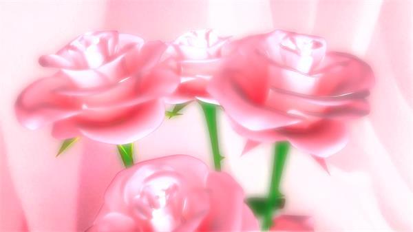 甜蜜粉红玫瑰花旋转恋人节示爱求婚婚礼配景视频素材
