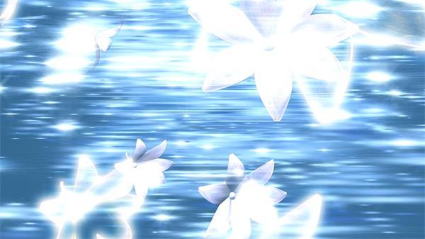 简单洁白梦幻背景百合花循环旋转犹如海面上飞舞动态视频素材