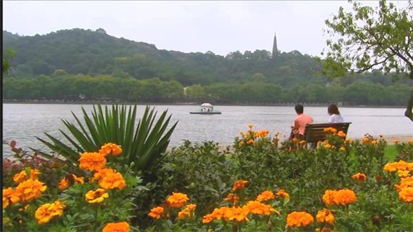 旅游景点杭州西湖鲜花绿树湖面实拍高清视频素材