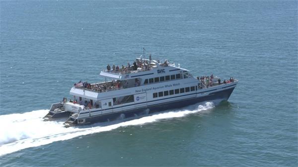 【4K】航海邮轮海上飞奔实拍航拍高清视频素材