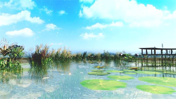 清澈荷塘粒子飘浮河草莲花荷叶浮在水面视觉效果LED视频素材