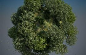 C4D插件:园林场景岩石风景植物生成插件(含植物图)Laubwerk Surf