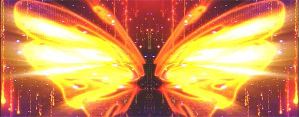 艳丽炫光炙热翅膀飞舞拍打粒子流星坠落梦幻舞台背景视频素材
