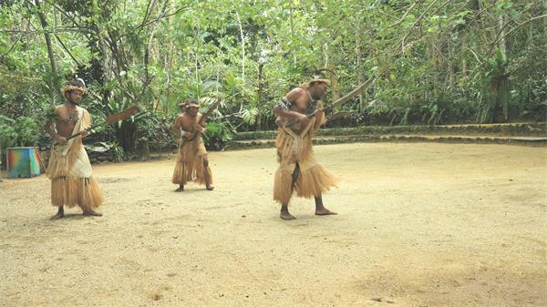 独特民族部落手持工具丛林间进行集体舞蹈地理文化高清视频实拍