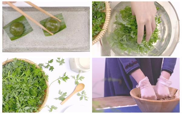 甜品糕点青团制造美食烹调水煮青艾高清讲授视频实拍
