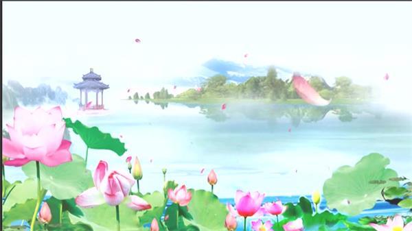 虚拟唯美荷塘景色荷花绽放花瓣粒子飞舞平静湖面背景视频素材