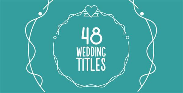 AE模板 48款简洁精致线条勾画出婚礼场景标题字幕模版 AE素材