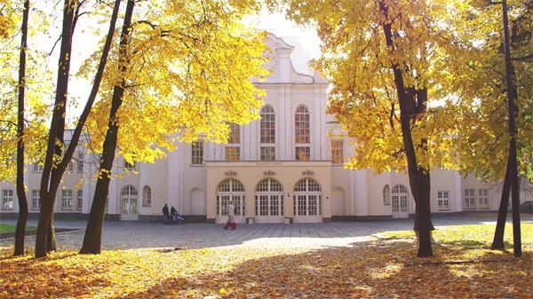 壮丽建筑物前唯美秋季黄色树叶飘落一地意境高清视频实拍