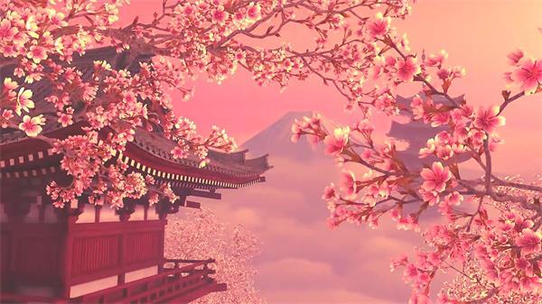 典雅樱花场景优美绽放富士山云海幻化古典唯美气味配景视频素材